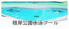 根岸公園水泳プール